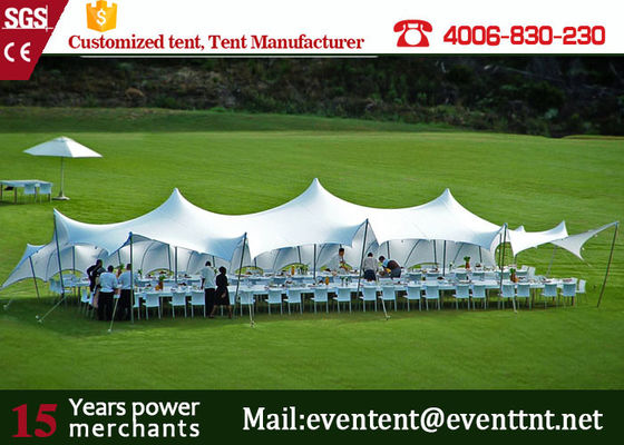 China Custom Freeform Stretch Tent With Aluminum Frame Toughened Glass Door supplier